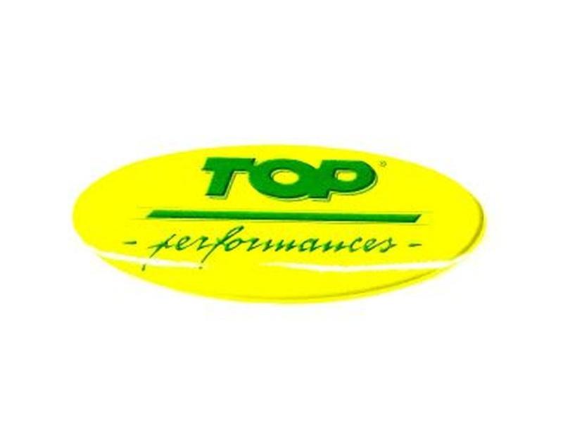 Aufkleber TOP PERFORMANCES / 75mm x 30mm
